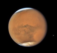 The three states of the Martian dust storm